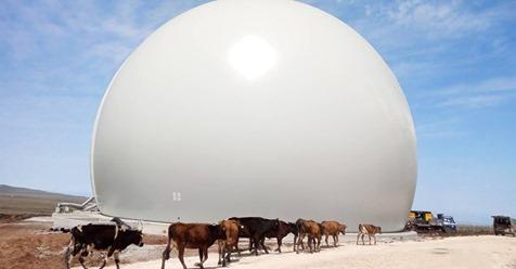 Biogas bulb Flexxolutions